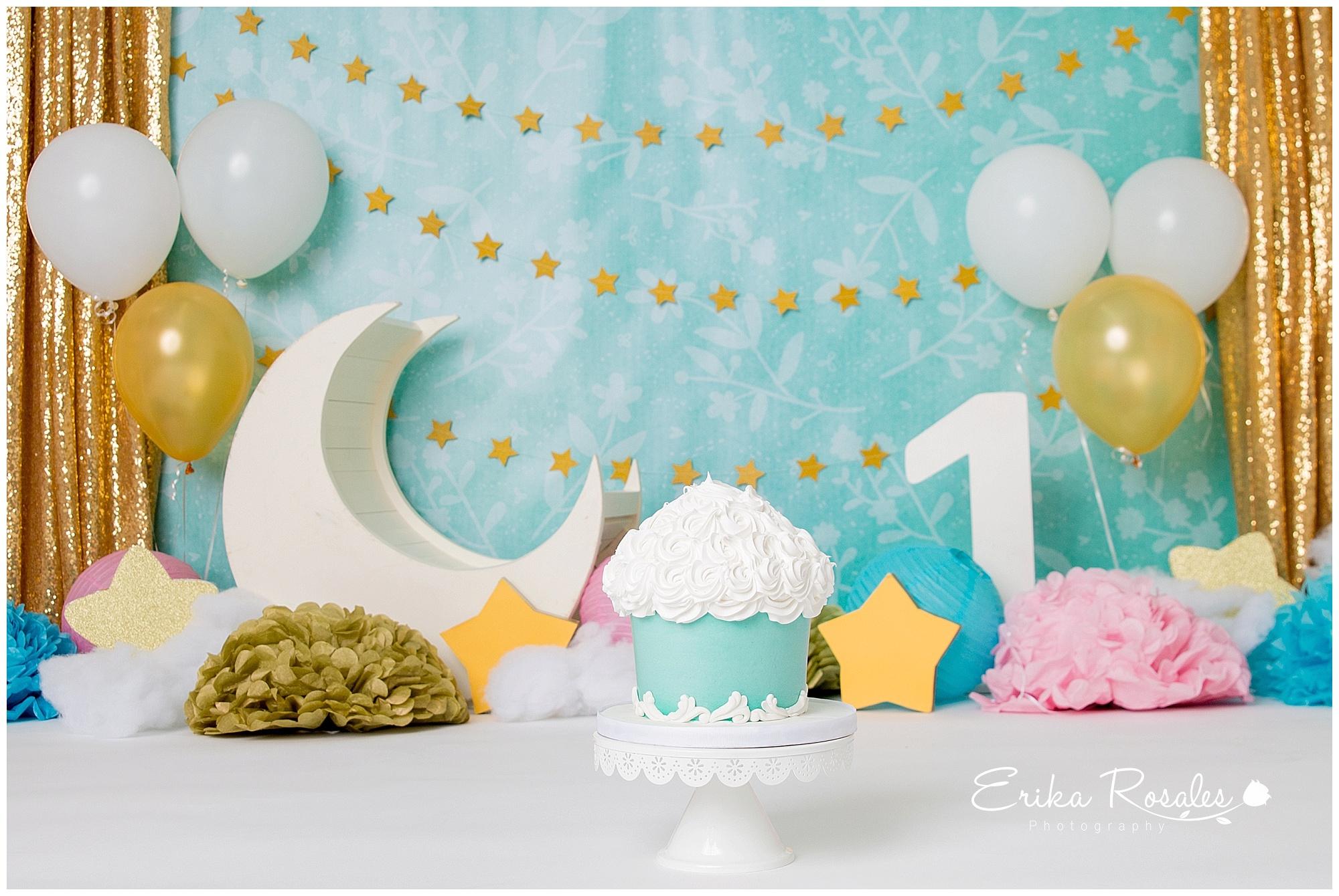 Cake Smash Twinkle Twinkle Little Star Theme Twin Boy And