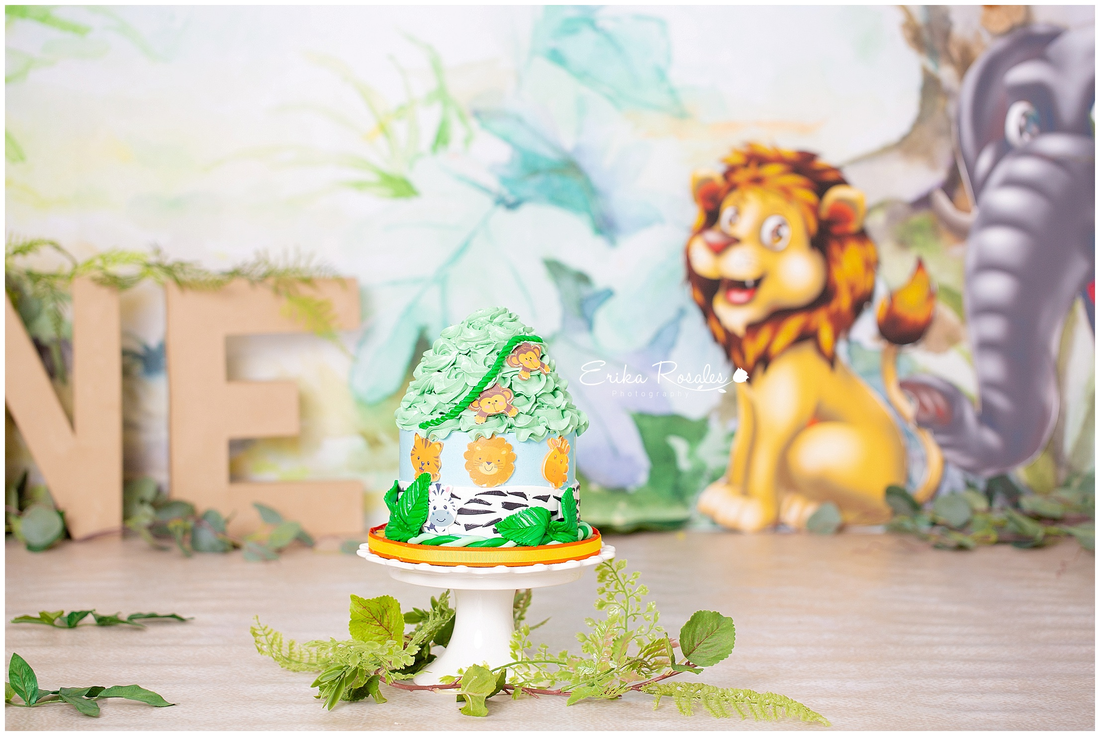 Jungle safari smash cake baby photographer the bronx studio
