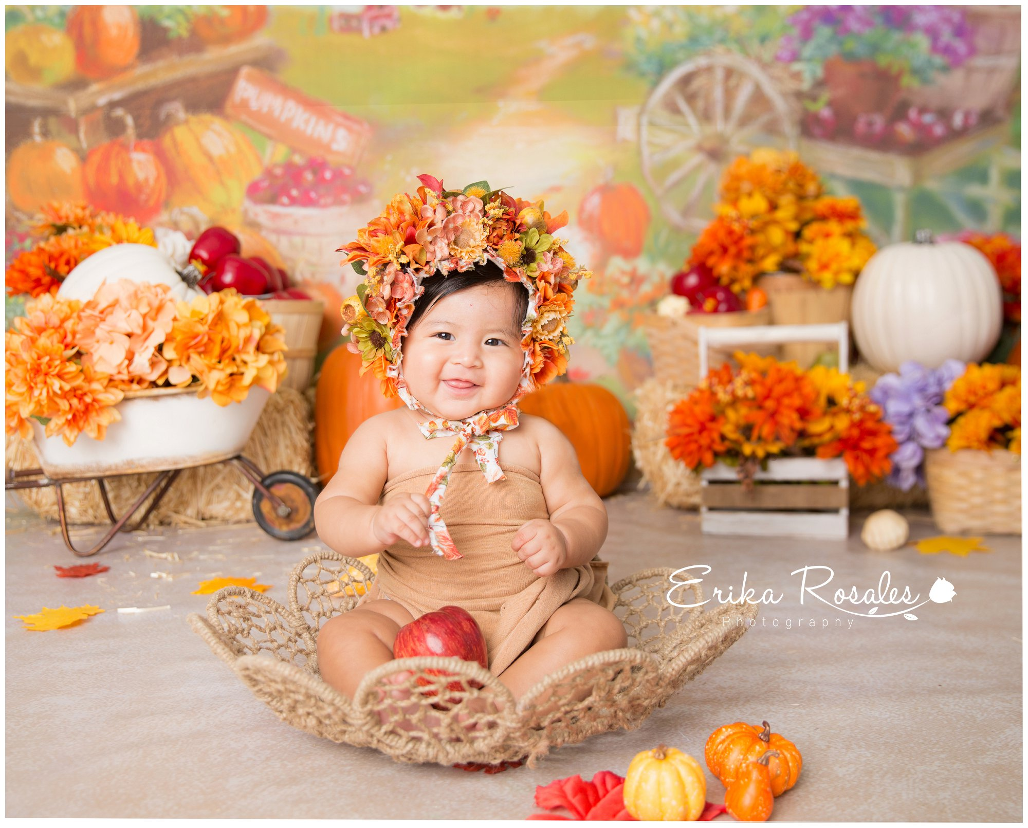 Fall patch mini session the bronx baby photographer erika