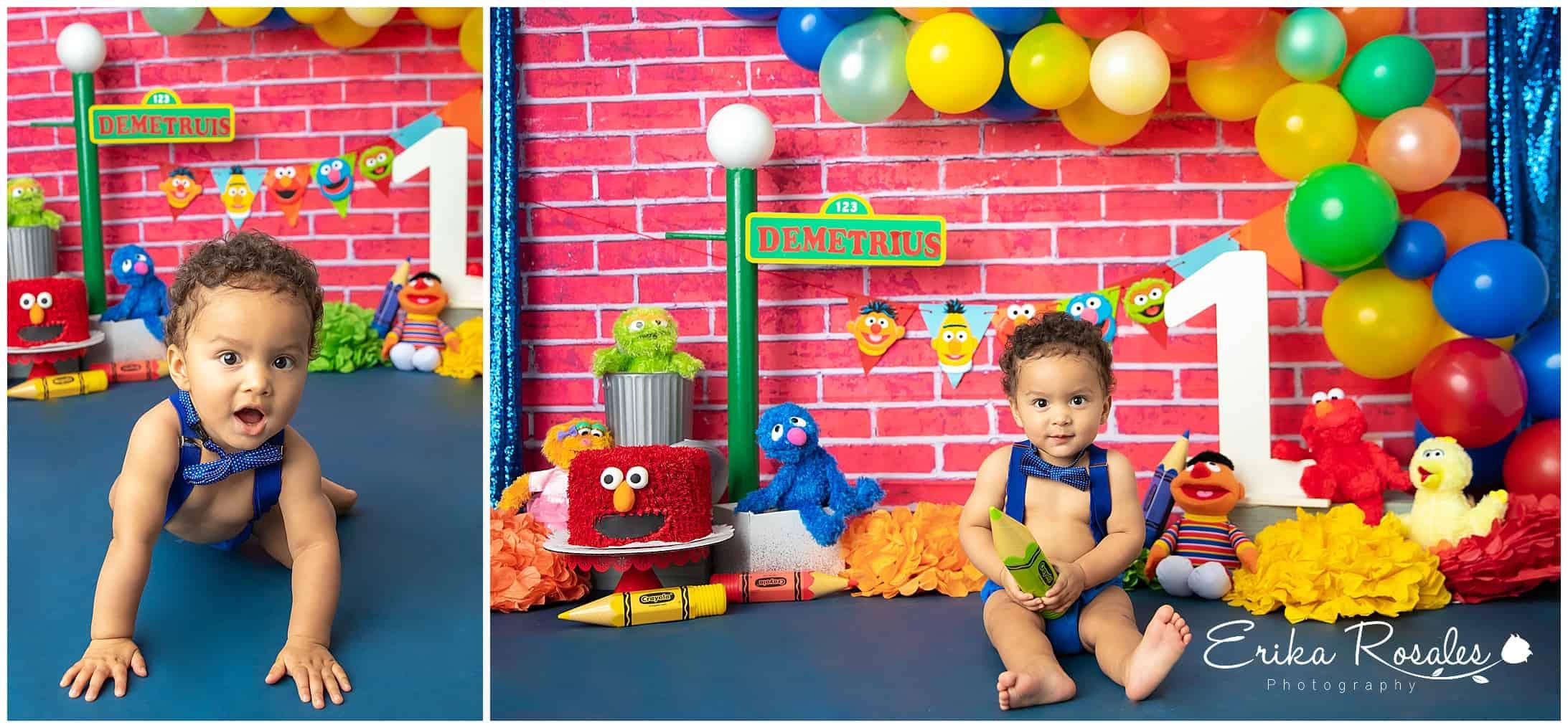 Fabulous Sesame Street Cake Smash Baby Photographer The Bronx Studio Personalised Birthday Cards Sponlily Jamesorg