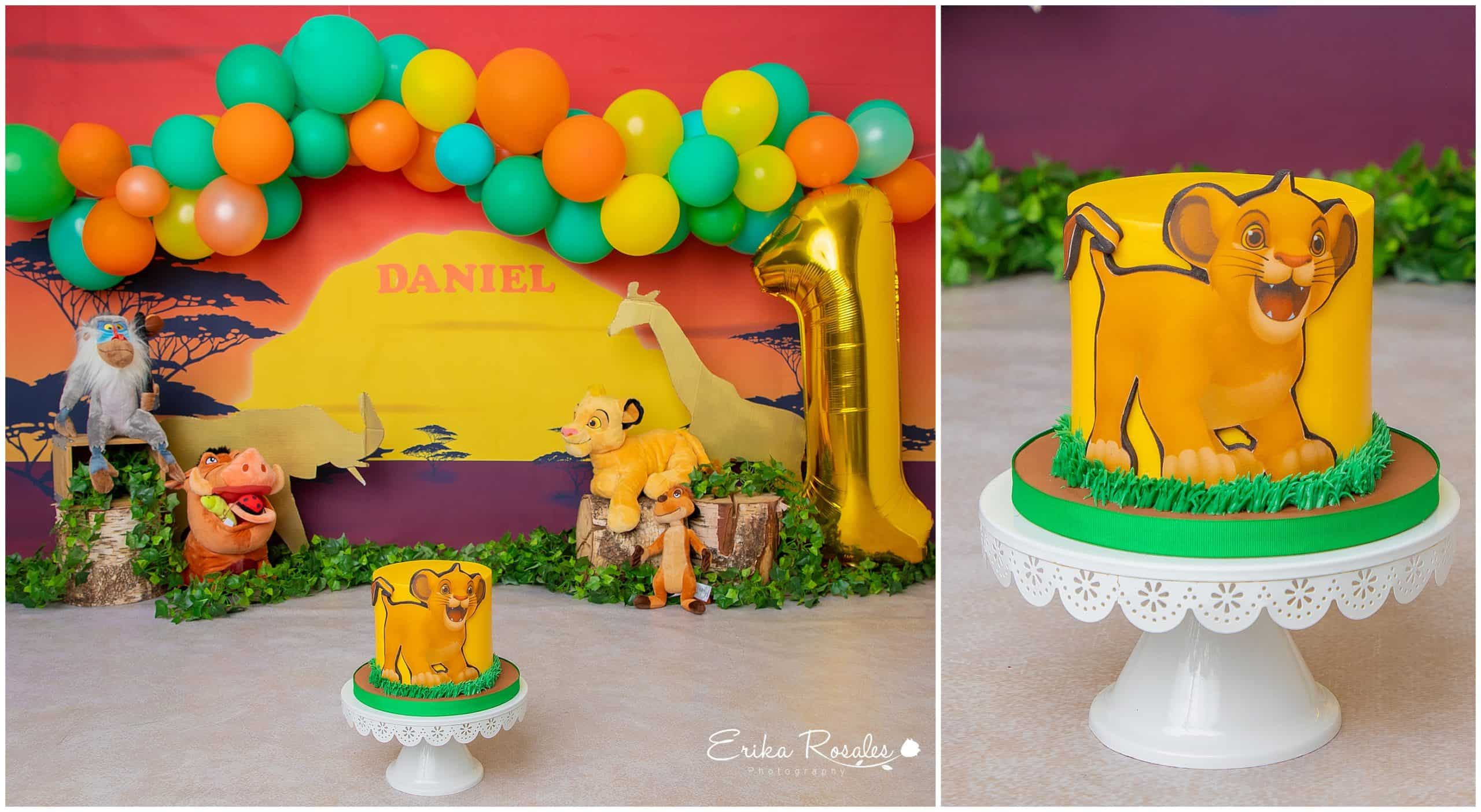 Sensational The Lion King First Birthday Cake Smash Archives Erika Rosales Funny Birthday Cards Online Fluifree Goldxyz